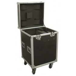 FLIGHT CASE POUR LYRE