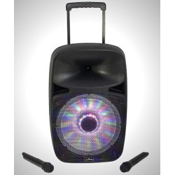 SYSTEME SONO PORTABLE AVEC USB, BLUETOOTH & MICRO VHF 12''/30CM PARTY